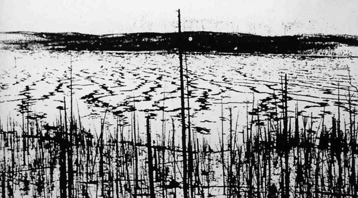 http://johnstodderinexile.files.wordpress.com/2006/03/tunguska.jpg