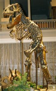 dinosaur-skeleton.jpg