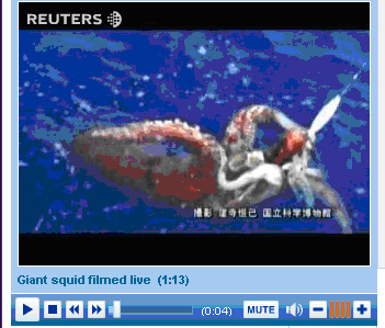 giant-squid-video-capture-copy.jpg