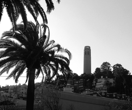 coit-tower-on-a-windy-december-day-bw.jpg