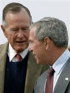 bush-and-bush.jpg